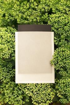 Kreatywna ramka do kompozycji układu wykonana z zielonego krzewu kwiatu sedium z czarno-białą skrzynką na ...