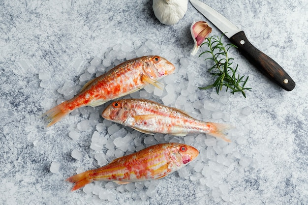 Kreatywne aranżacje surowej ryby