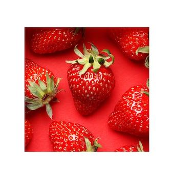 Kreatywne lato wzór z truskawek na jasnym czerwonym tle. z ramą . minimalna koncepcja owoców. leżał płasko. miejsce na tekst. abstrakcyjny.