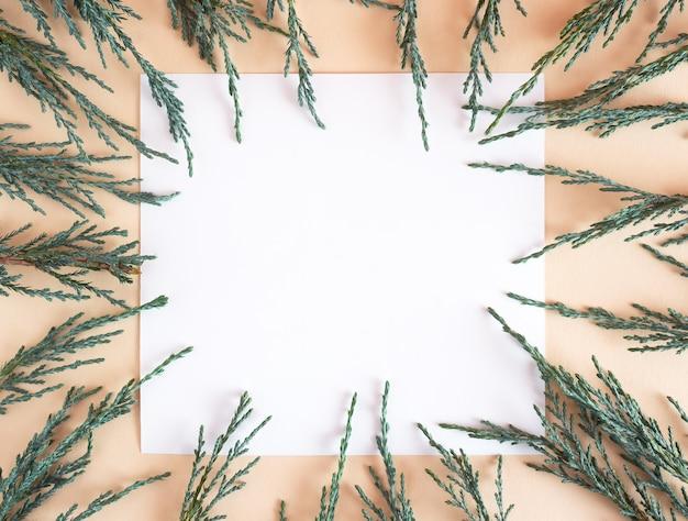 Kreatywne minimalistyczne tło z gałęziami jałowca na beżowym tle z miejscem na kopię.