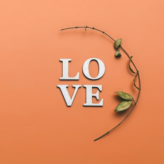 Kreatywne płaskie układanie słowa miłość na pomarańczowo z naturalnymi roślinami.