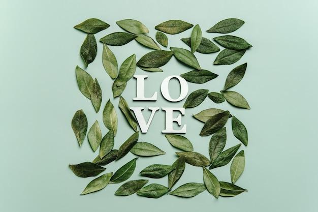 Kreatywne, płaskie układanie słowa miłość z naturalnymi liśćmi.
