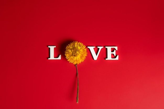Kreatywne, płaskie układanie słowa miłość z naturalnymi roślinami.