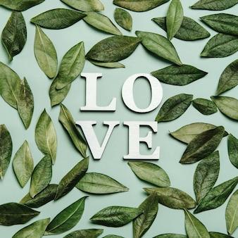 Kreatywne, płaskie ukształtowanie słowa miłość na delikatnym kolorowym tle z naturalnymi liśćmi.