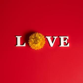 Kreatywne, płaskie ułożenie słowa miłość na czerwono z naturalnymi roślinami