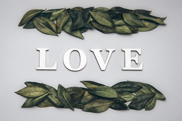 Kreatywne, płaskie ułożenie słowa miłość na szaro z naturalnymi liśćmi.
