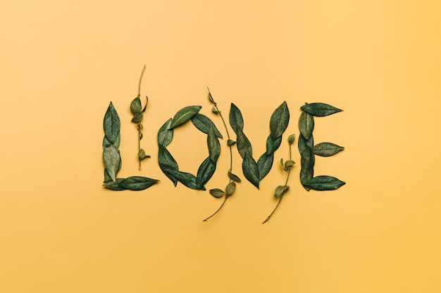 Kreatywne, płaskie ułożenie słowa miłość wykonane z naturalnych liści. koncepcja miłości.