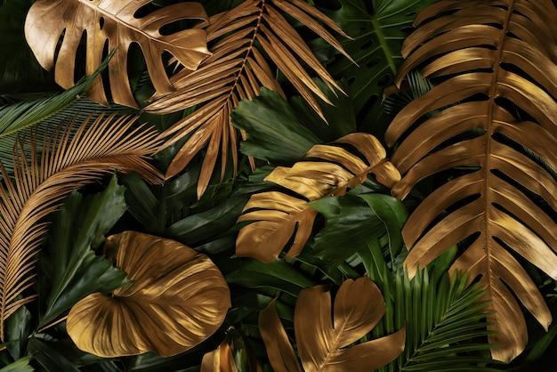 Kreatywne tło natury złoto i zielone tropikalne liście monstera i palm