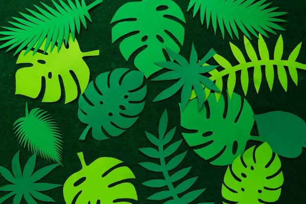 Kreatywne tropikalne liście na zielonej ścianie. widok z góry. koncepcja natury. streszczenie tabeli z papieru tropikalnych liści.