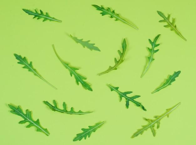 Kreatywnie kolor wzór rukola opuszcza na zielonym tle, flatlay, układ