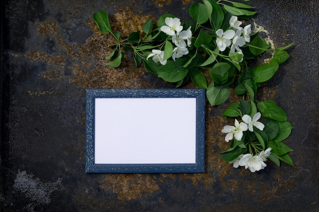 Kreatywnie odgórnego widoku jabłoni kwitnienia kwiatów śniadanio-lunch rama na milenium różowym tle z kopii przestrzenią w minimalnym stylu