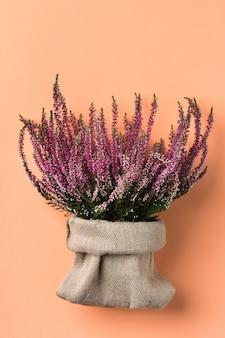 Kreatywny jesień skład dzień dziękczynienia, kartkę z życzeniami. bukiet kwiatów erica, wrzos na koralowym różowym tle. martwa natura, minimalizm, płasko leżący.