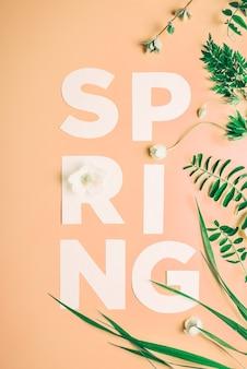 Kreatywny napis wiosenne kwiaty i liście