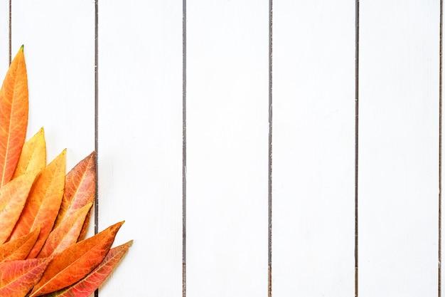 Kreatywny układ kolorowych jesiennych liści. mieszkanie leżał na białym tle drewnianych.
