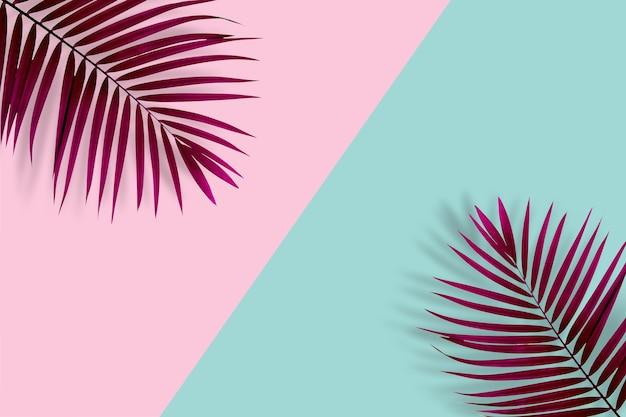 Kreatywny układ natury wykonany z liści palmowych na pastelowym różowym i niebieskim tle