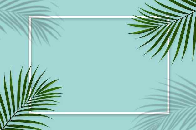 Kreatywny układ natury wykonany z tropikalnych liści palmowych z białą ramką na niebieskim tle