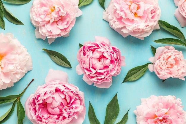 Kreatywny układ wykonany z różowych kwiatów piwonii. leżał płasko. kompozycja kwiatowa