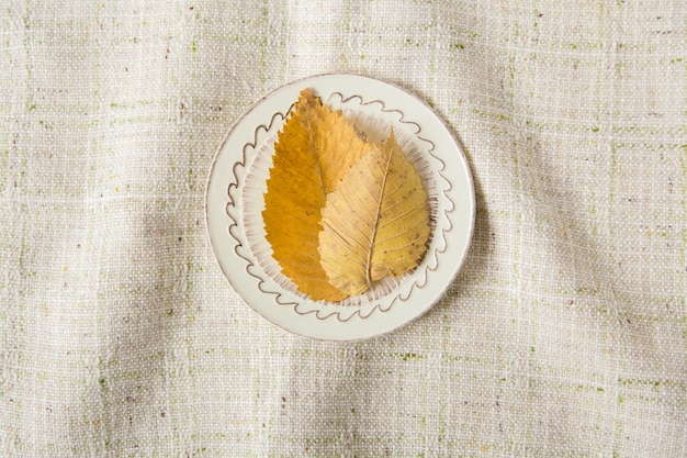 Kreatywny układ. żółte jesienne liście na talerzu. miejsce na tekst. minimalistyczny styl. tło obrus