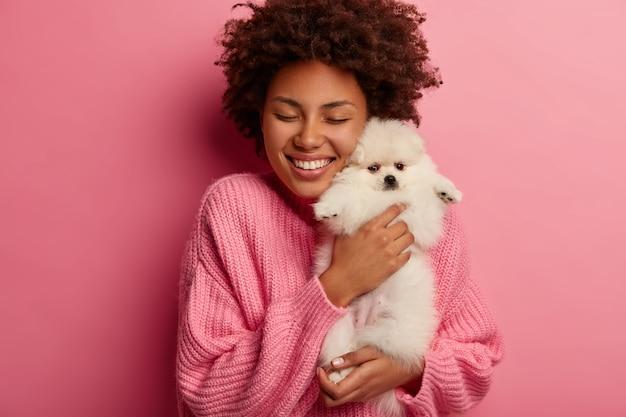 Kręcona młoda kobieta z miłością obejmuje białego szpica, bardzo szczęśliwa z prezentu, o jakim marzyła, nosi za duży sweter, modele na różowym tle.