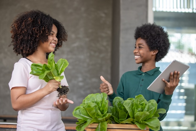 Kręcone włosy dzieci afro pokazujące organiczną sałatkę ze świeżych warzyw w drewnianym pudełku po zbiorach