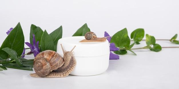 Krem ze śluzem ślimaka z naturalnym aromatem kwiatowym pielęgnacja cery