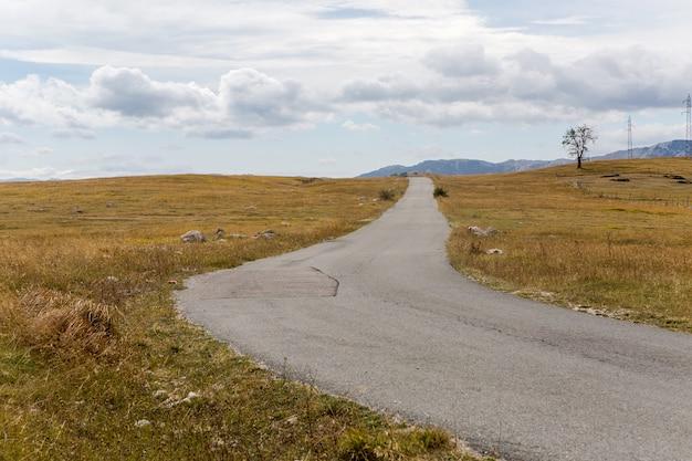 Kręta droga jesień w żółtym polu