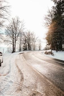Kręta droga pokryta brudem i śniegiem otoczona drzewami w świetle słonecznym