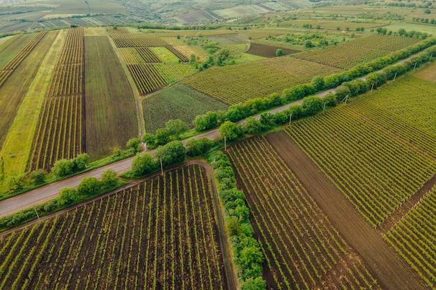 Kręta wiejska droga w polu widok z lotu ptaka pola z asfaltową drogą słynna sceneria życia kolorowe pola uprawne krajobraz