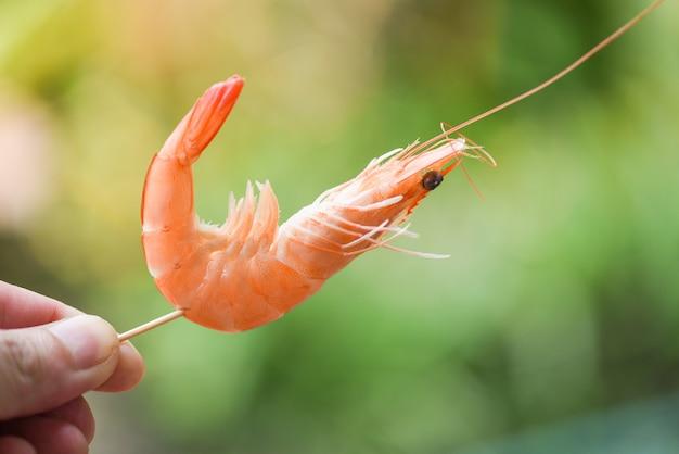 Krewetki szaszłyki w dłoni i tle przyrody krewetki półksiężyc owoce morza