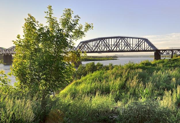 Krokwie metalowego mostu na wysokich podporach brzegu wielkich drzew syberyjskich