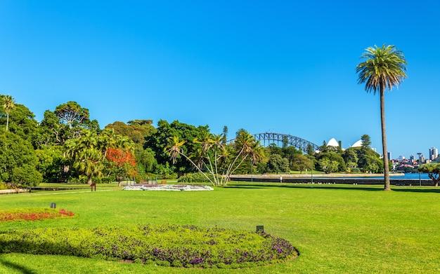 Królewski ogród botaniczny w sydney - australia, nowa południowa walia