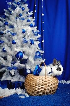 Królik siedzi pod choinką z prezentami