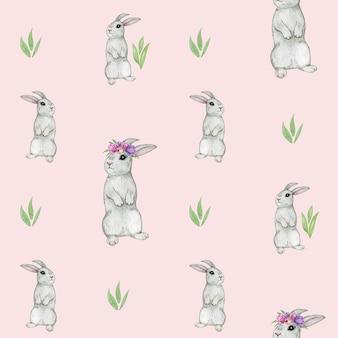 Królik wzór, królik akwarela