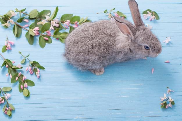 Królik z kwiatami na niebieskiej drewnianej ścianie