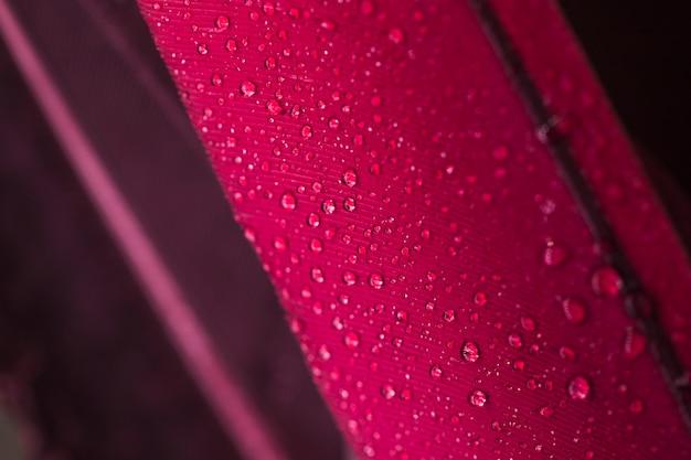 Kropelki wody na różowej powierzchni pióra