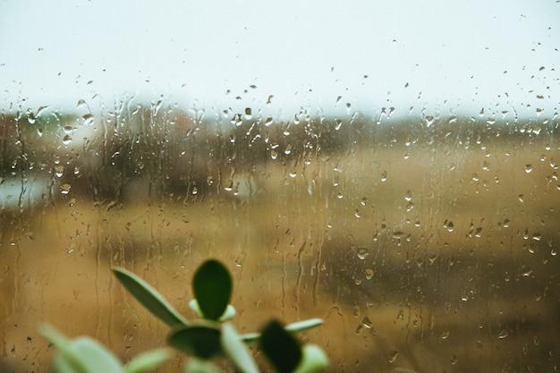 Krople deszczu na oknie. pochmurna pogoda. jesień lub wiosna. tło i tekstura.
