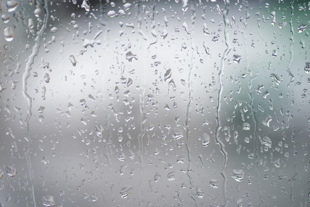 Krople deszczu na oknie z zielenią