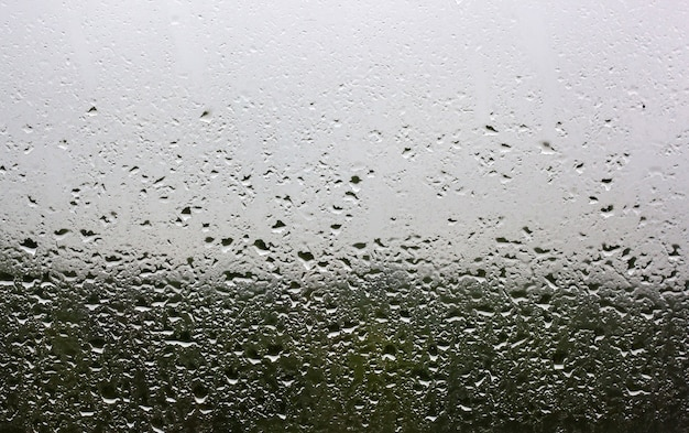 Krople deszczu na szybie za oknem widać zielony las i szare niebo.