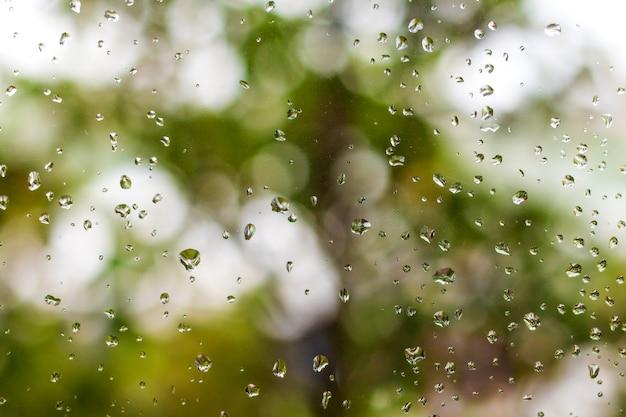 Krople deszczu na tle okna i zieleni.