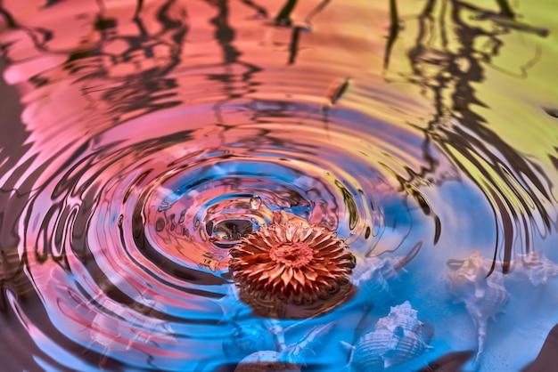 Krople deszczu spadają na powierzchnię wody