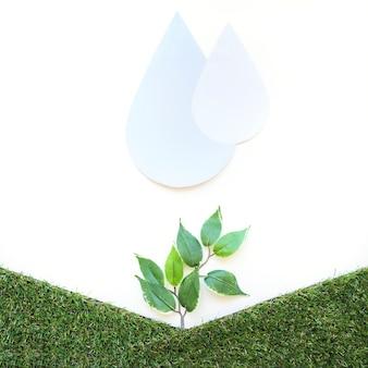 Krople wody na małe drzewa