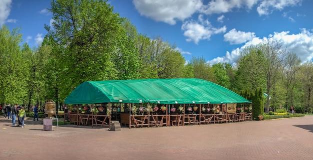 Kropywnyckij, ukraina 09.05.2021. arboretum kropywnyckiego w parku miejskim w słoneczny wiosenny dzień