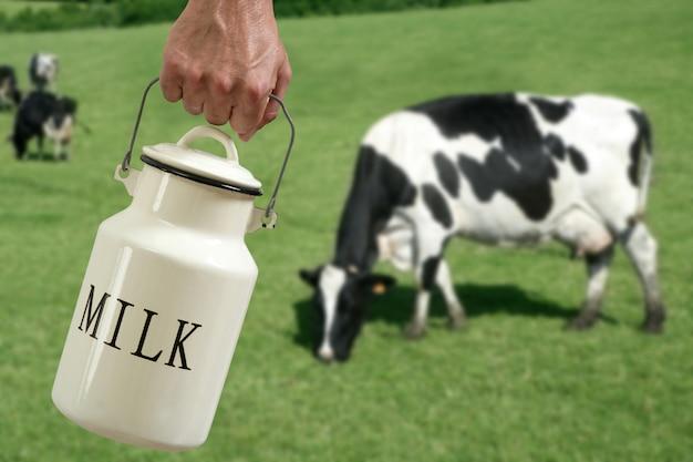 Krowa rolnik ręka garnek mleka na łące