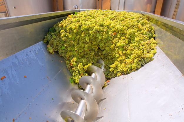 Kruszarka do korkociągów z chardonnay stosowana w winiarstwie