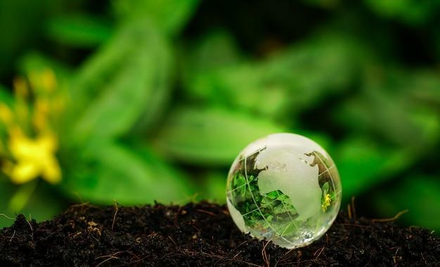 Kryształowa ziemia na glebie w lesie ze światłem słonecznym koncepcja dnia ziemi w środowisku