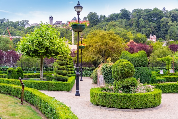 Krzewy w różnych kształtach, park letni w europie. profesjonalne ogrodnictwo, europejski zielony krajobraz, dekoracja roślin ogrodowych