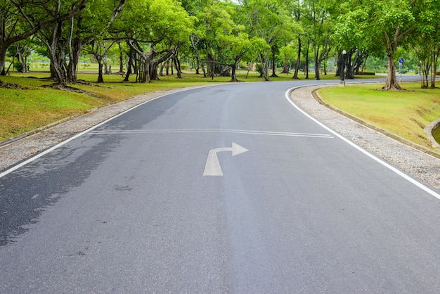 Krzywej drodze świeżej zieleni