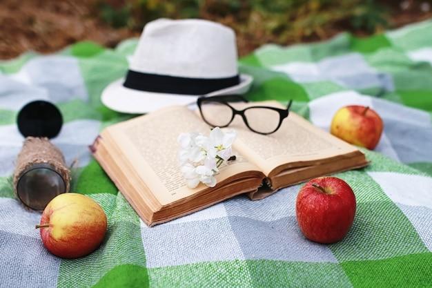Książka i kosz z jedzeniem na pikniku w kratę w wiosennym parku