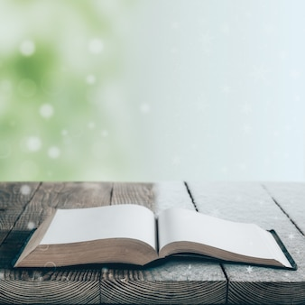 Książka na białym tle