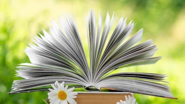 Książka z kwiatami między stronami.